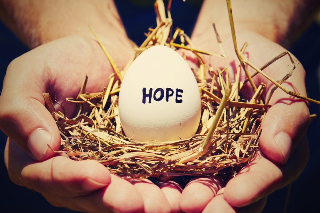 Is Donor Egg IVF Right for You?