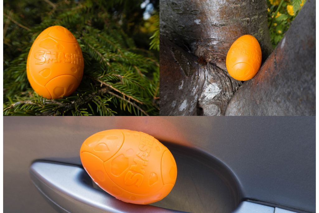 Shashers series 3 egg hunt. Eggs hidden in a bush, a tree and a car door handle