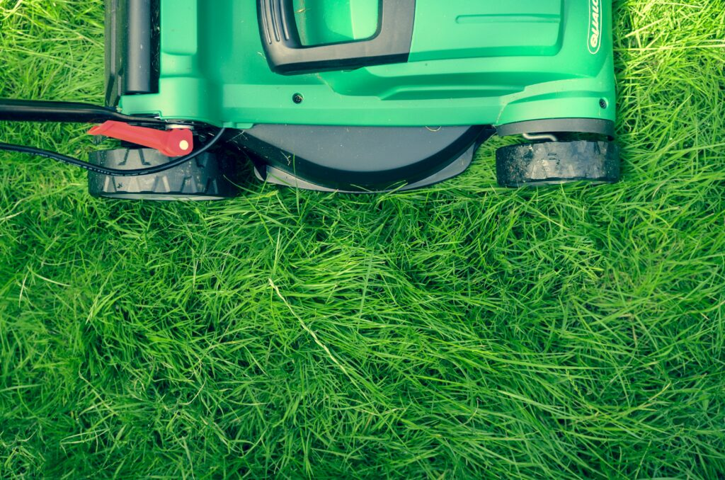 12 Tips to Grow a Beautiful/Healthy Lawn This Summer
