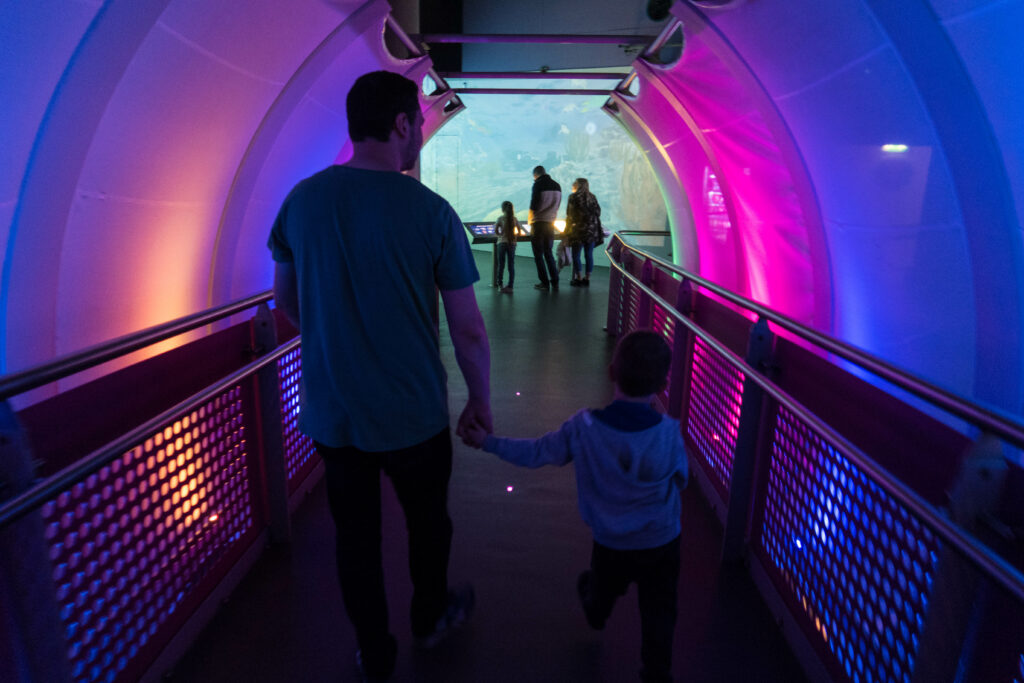 my husband and son walking down the light tunnel