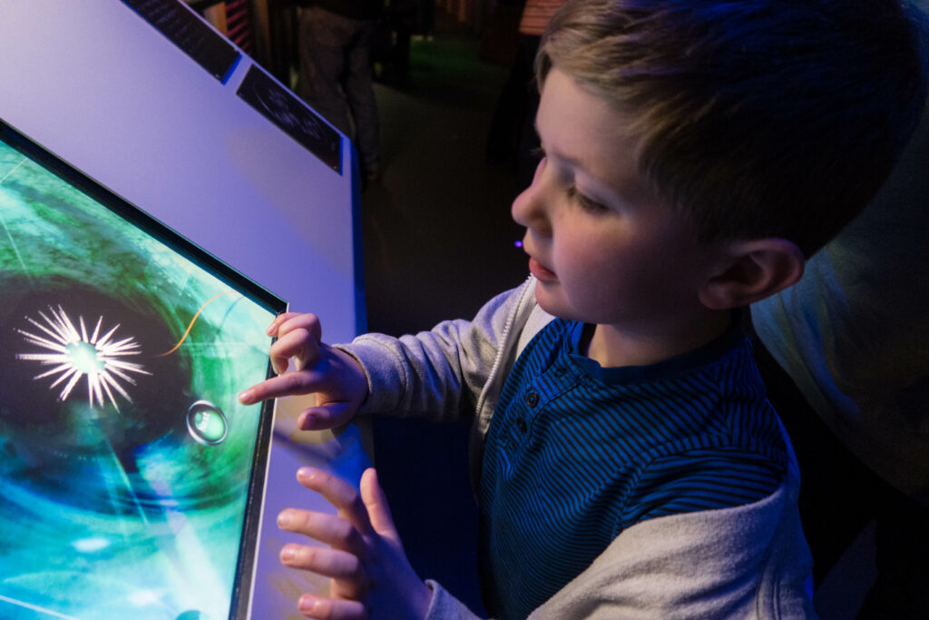 My son looking at the infrmation screen in The Deep