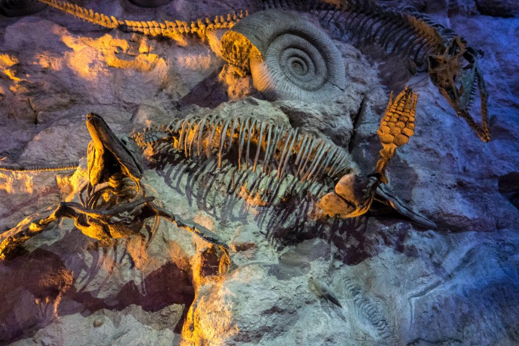 Replica fossils