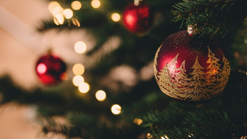 Five Fun Things to Do with Kids at Christmas Time